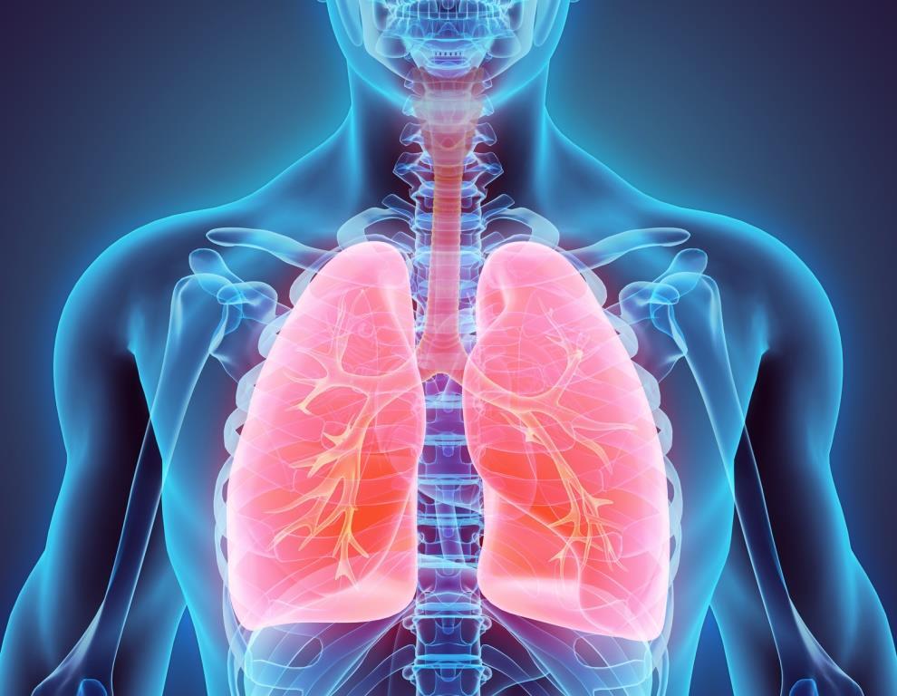 Gimv, Sofinnova Partners und Gilde Healthcare steigen mit einer 43,5 Mio. EUR großen Series A-Finanzierung beim Life Science-Start-up Breath Therapeutics ein.