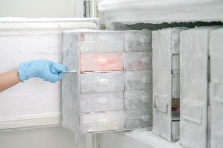 Kühlbox-Start-up sichert sich siebenstelligen Betrag