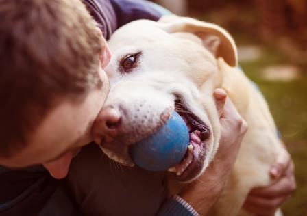 IBB Beteiligungsgesellschaft investiert in Start-up für Tiergesundheit