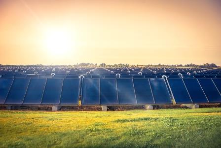 Venture Capital-Einheit der BayWa r.e. investiert in Software zur Optimierung von Solarparks