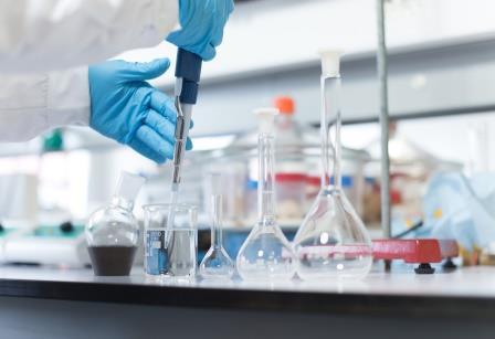 Forschung im Bereich Stammzellen fördern: Dresdner Start-up schließt Seed-Runde ab