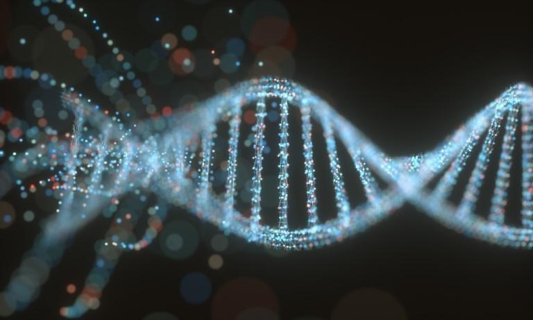 Technologieplattform für schnellere Medikamentenentwicklung erhält Finanzierung