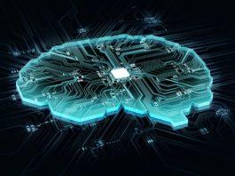 Neue Anwendungsbereiche für Neuromodulation: HTGF steigt bei Software-Start-up CereGate ein