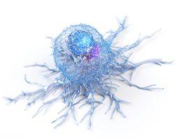50 Mio. EUR zur Behandlung von Tumoren: CatalYm schließt nächste Finanzierungsrunde ab