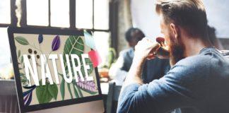 Grüne Startups erhalten Corona-Boost